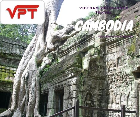 Siemreap Temple Tours