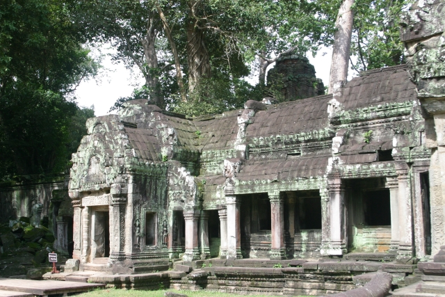 Ancient Ta Prohm Temple in Siemreap